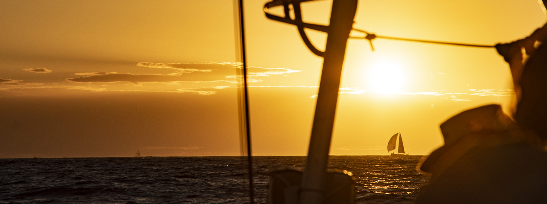 Yachts on the horizon - sunset