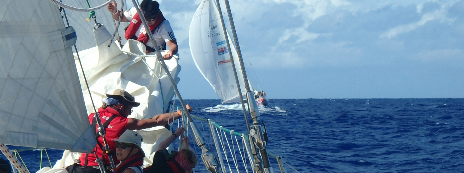 ​Race 7 Day 2: Tropical conditions as teams near the Doldrums